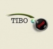 TIBO IT International SRL