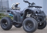 ATV Grizzly R8 125cc + Casca Cadou IMPORT GERMANY